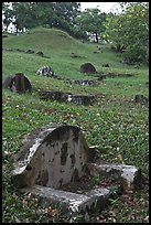 Chinese graves on hillside, Bukit China cemetery. Malacca City, Malaysia ( color)