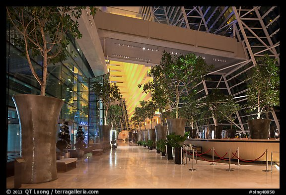 Potted trees, Marina Bay Sands hotel lobby. Singapore (color)