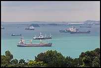 Large cargo ships, Singapore Strait. Singapore (color)