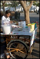 Food vendor with a wheeled food stand. Guadalajara, Jalisco, Mexico ( color)