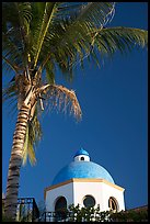 Palm tree and  blue dome, Puerto Vallarta, Jalisco. Jalisco, Mexico
