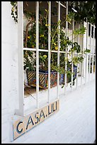 Window of home with plant and ceramic name plate, Puerto Vallarta, Jalisco. Jalisco, Mexico ( color)