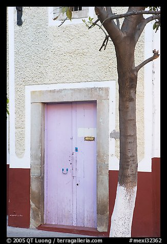 Door and tree. Guanajuato, Mexico (color)