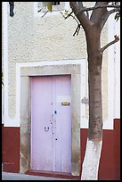 Door and tree. Guanajuato, Mexico ( color)
