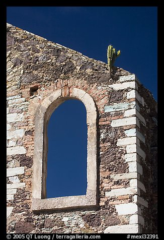 Corner of a ruined house with cactus growing out. Guanajuato, Mexico (color)