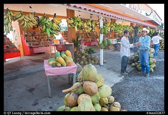Roadside fruit stand. Mexico