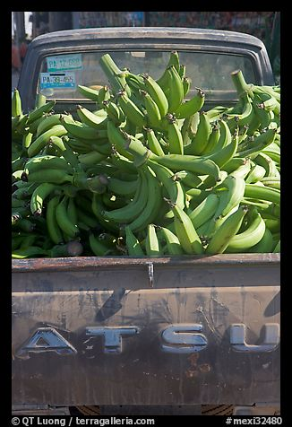 Bananas in the back of a pick-up truck. Mexico (color)