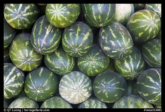 Watermelons. Mexico (color)