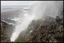 Jet of water blowing up 30 meters, La Bufadora. Baja California, Mexico ( color)
