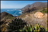 Mountainous Pacific coastline. Baja California, Mexico ( color)