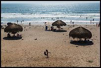 Straw sun shelter umbrellas and ocean, Ensenada. Baja California, Mexico ( color)
