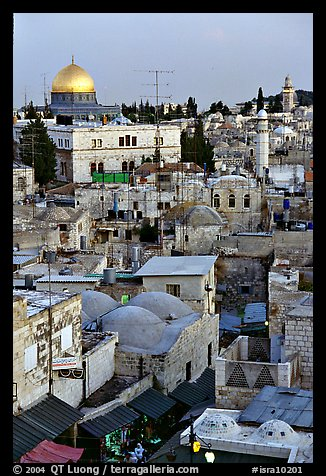 Old town rooftops and Dome of the Rock. Jerusalem, Israel (color)