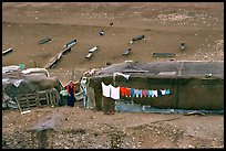 Bedouin camp, Judean Desert. West Bank, Occupied Territories (Israel) ( color)