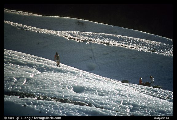 Alpinists training at the bottom of the Bossons glacier. Alps, France (color)