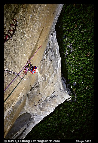 Belaying the following pitch, a thin crack in the middle of nowhere. El Capitan, Yosemite, California (color)