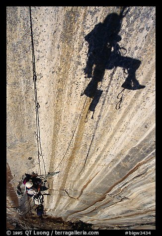 Cleaning the second pitch on the West Face. Leaning Tower, Yosemite, California (color)