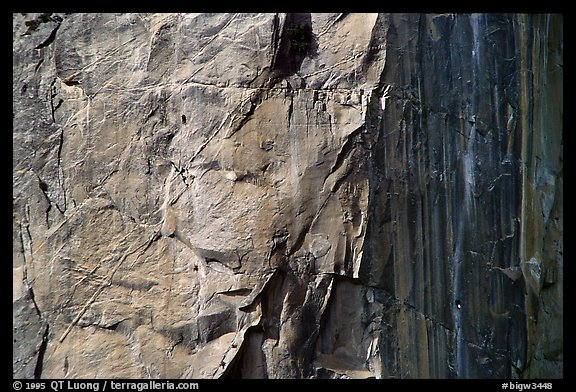 Sunny side: the South Face route (look for the 4 climbers). Washington Column, Yosemite, California (color)
