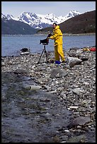 Large format photographer wearing kayaking gear on a beach in East Arm. Glacier Bay National Park, Alaska (color)