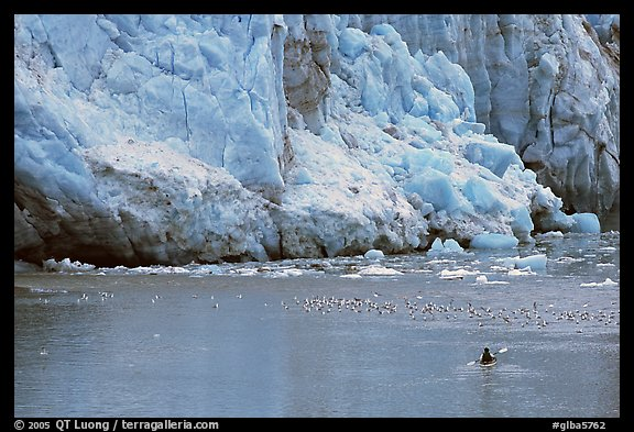 Kayaker at the base  of Lamplugh Glacier. Glacier Bay National Park, Alaska (color)