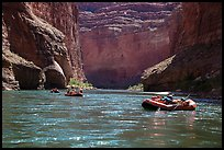 Rafts below Redwall limestone canyon walls, Marble Canyon. Grand Canyon National Park, Arizona ( color)
