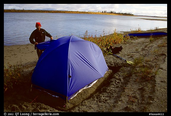 Camper setting up tent on a sand bar along the Kobuk River. Kobuk Valley National Park, Alaska (color)
