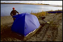 Camper setting up tent on a sand bar along the Kobuk River. Kobuk Valley National Park, Alaska