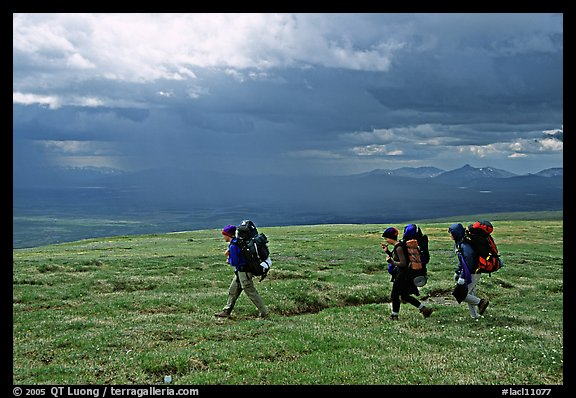 Three backpackers walk on a ridge in the tundra. Lake Clark National Park, Alaska (color)