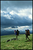 Backpackers seen from the side in the tundra. Lake Clark National Park, Alaska (color)