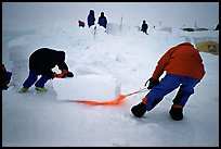 Building an igloo, which offers a very good weather protection.. Denali, Alaska