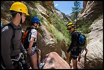 Hikers preparing to pass obstacle with ropes in Mystery Canyon. Zion National Park, Utah ( color)