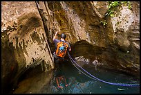 Canyoneer rappels into pool of water, Mystery Canyon. Zion National Park, Utah ( color)