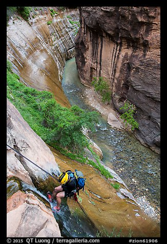 Canyoneer rappels into the Virgin River Narrows along Mystery Falls. Zion National Park, Utah (color)