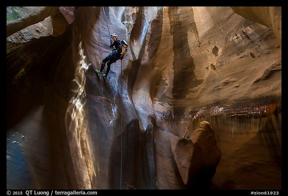 Woman rappels into chamber known as The Cathedral, Pine Creek Canyon. Zion National Park, Utah (color)
