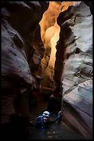 Woman wades in chest deep water of flooded slot canyon, Pine Creek Canyon. Zion National Park, Utah ( color)
