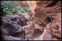 Canyoneers rappels in open section of Pine Creek Canyon. Zion National Park, Utah ( color)