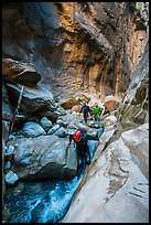 Canyoneers descend Orderville Canyon. Zion National Park ( color)