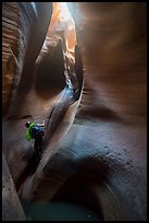 Canyoneer rappels deeps inside Keyhole Canyon. Zion National Park ( color)
