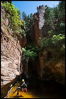 Canyoneer about to land in pool in open section of Das Boot. Zion National Park ( color)