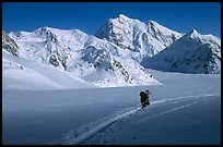 Mountaineers at the base of Mt McKinley. Denali National Park, Alaska, USA. (color)