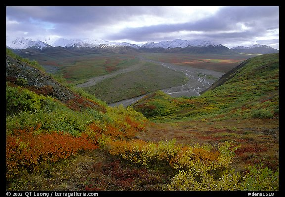 Tundra, braided rivers, Alaska Range at Polychrome Pass. Denali National Park (color)