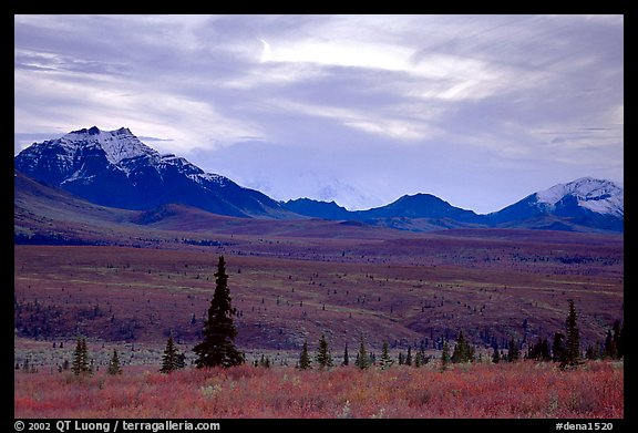 Alaska Range at dusk from near Savage River. Denali National Park (color)