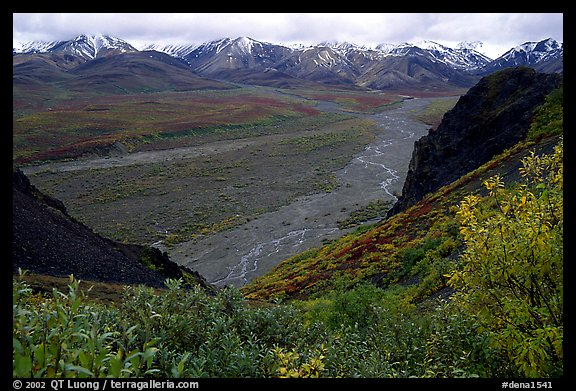 Tundra, wide valley with rivers, Alaska Range in the evening from Polychrome Pass. Denali National Park (color)