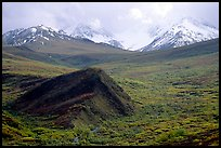 Hills and mountains near Sable Pass. Denali National Park, Alaska, USA. (color)