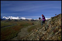Photographer at Polychrome Pass. Denali National Park, Alaska, USA. (color)