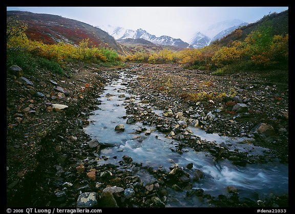 Creek near Polychrome Pass. Denali  National Park (color)