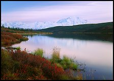 Wonder Lake and Mt McKinley at dusk. Denali National Park, Alaska, USA.