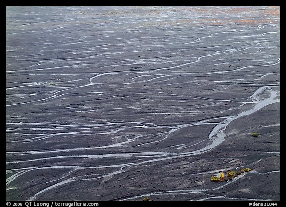 Braids of the McKinley River on sand bar near Eielson. Denali National Park (color)