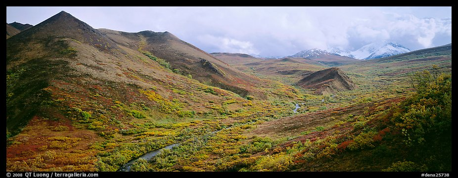 Tundra-covered foothills and valley. Denali National Park (color)