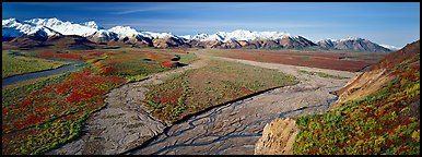 Alaskan scenery with wide braided rivers and mountains. Denali National Park (Panoramic color)