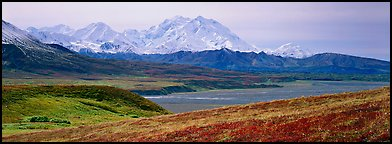Mount McKinley rises above autumn tundra. Denali National Park, Alaska, USA.